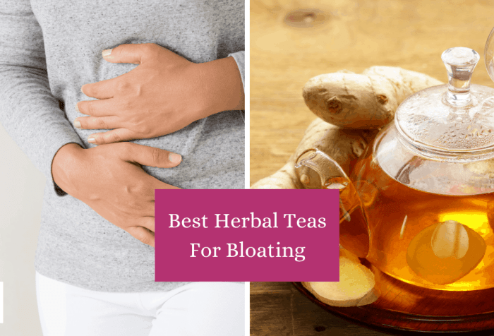 herbs for bloating