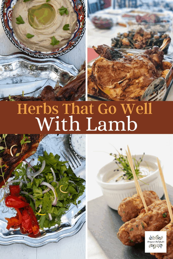 herbs that go well with lamb