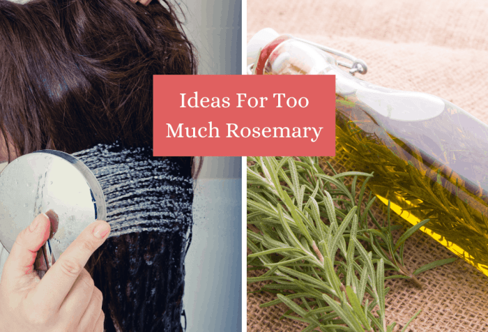 ideas for too much rosemary