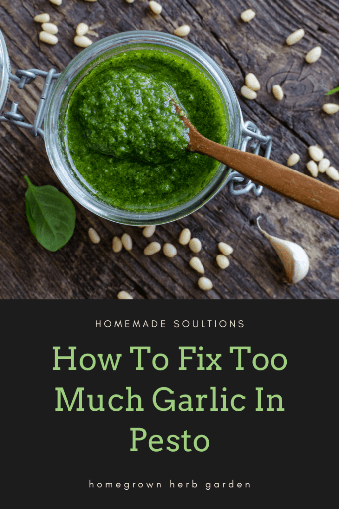 how to fix too much garlic in recipes