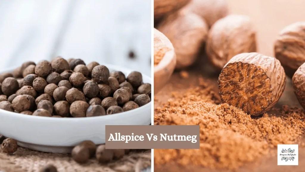 Allspice vs nutmeg