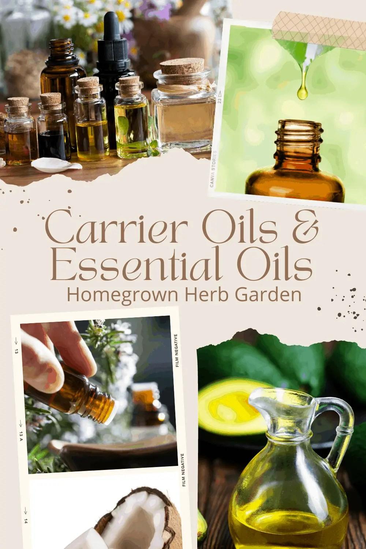 carrier oils vs essential oils