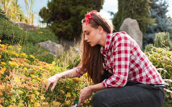 Classic Gardening Mistakes To Avoid