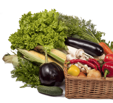 how to operate a food processor ingredients