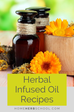 Discover herbal infused oil recipes for a variety of medicinal uses including pain, muscle tension, swollen lymph, burns, bruises as well as cuts and wounds. Learn how to make this beneficial herbal medicine yourself. It's easier than you think. #Herbalism #HerbalismCoursesOnline