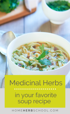 Discover how cooking with medicinal herbs in your favorite soup recipe is easy and great tasting. These delicious herbal medicines include garlic, nettles, shiitake, burdock, thyme, oregano, dandelion, reishi and astragalus.