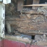 carpentry-termite-damage-main-support