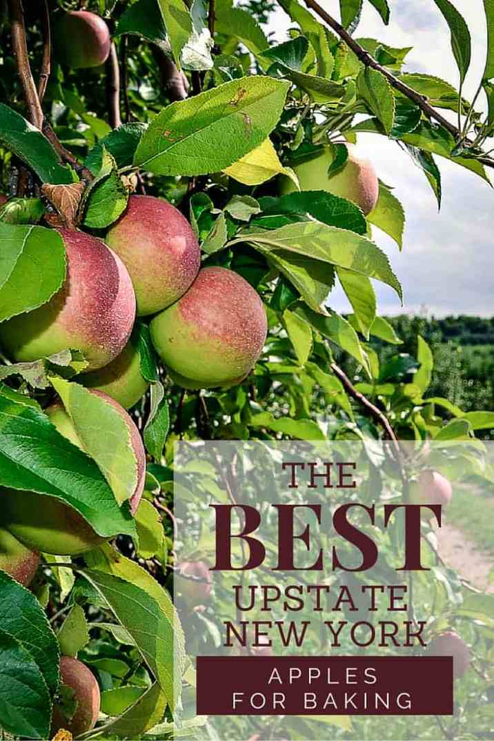 The Best Upstate New York Apples For Baking