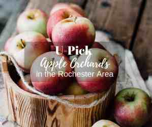 U-Pick Apple Orchards in the Rochester Area