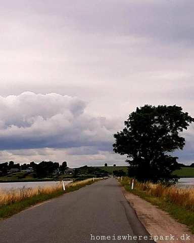 Alrø vej roadtrip