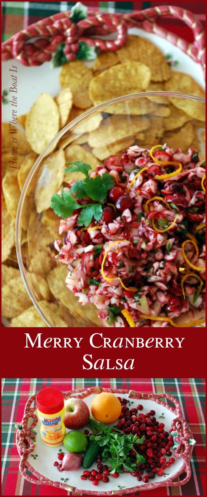 Merry Cranberry Salsa
