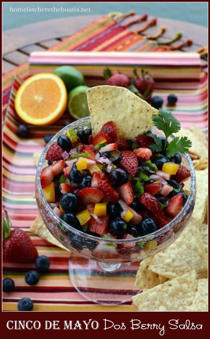 Cinco de Mayo Dos Berry Salsa