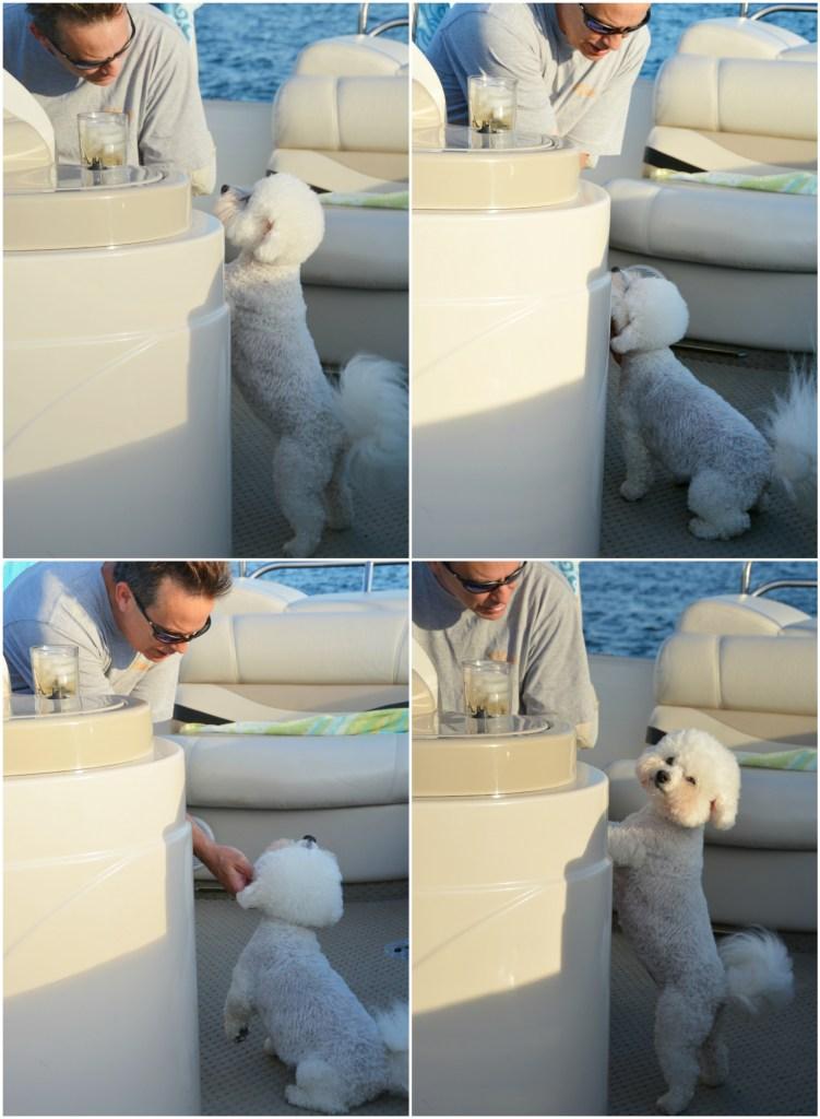 Chloe boat