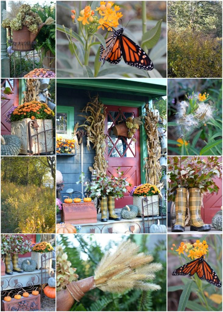 november-potting-shed