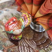 Turkey Fantail Napkin Fold Tutorial for Thanksgiving