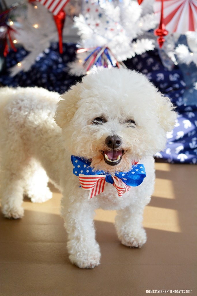 Patriotic Tree on porch for Gracie with patriotic bow for Independence Day | ©homeiswheretheboatis.net #4thofJuly #dog #patriotic