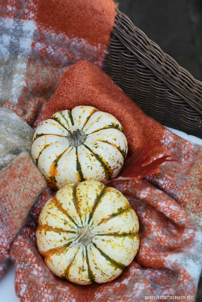 Tiger stripe pumpkins and throw   ©homeiswheretheboatis.net #halloween #tablescapes