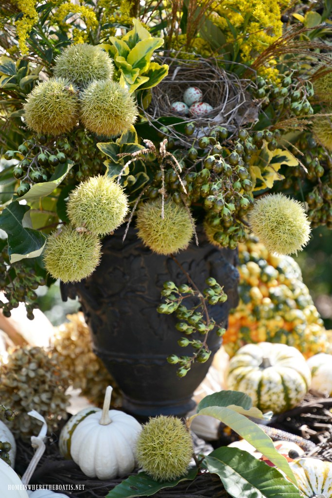 Fall arrangement with foliage, berries, pods and bird nest | ©homeiswheretheboatis.net #fall #arrangement