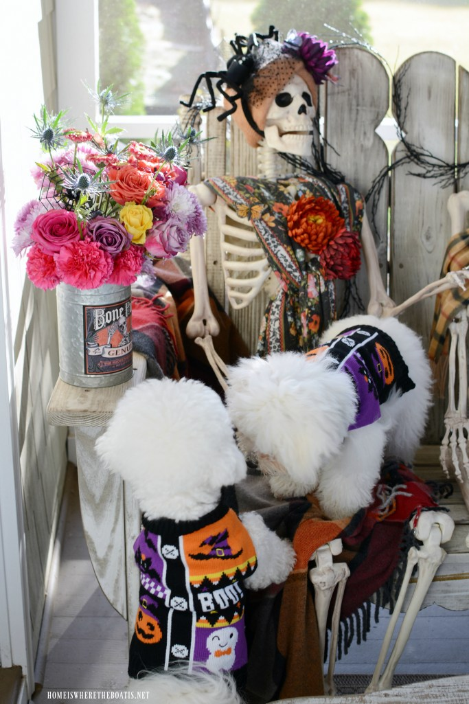 Skeleton Crew and Dogs on the Porch | ©homeiswheretheboatis.net #halloween #humerus #skeleton #dogs