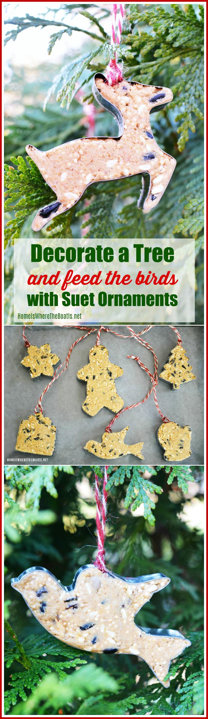 suet bird feeder ornaments