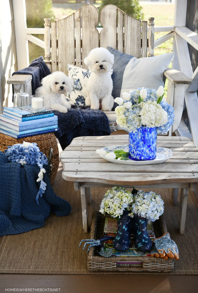 Dogs on the porch and January Blues | ©homeiswheretheboatis.net