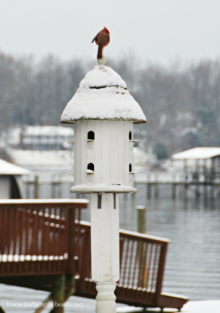 Cardinal perched on birdhouse | ©homeiswheretheboatis.net #winter #tablescapes #snow #birds