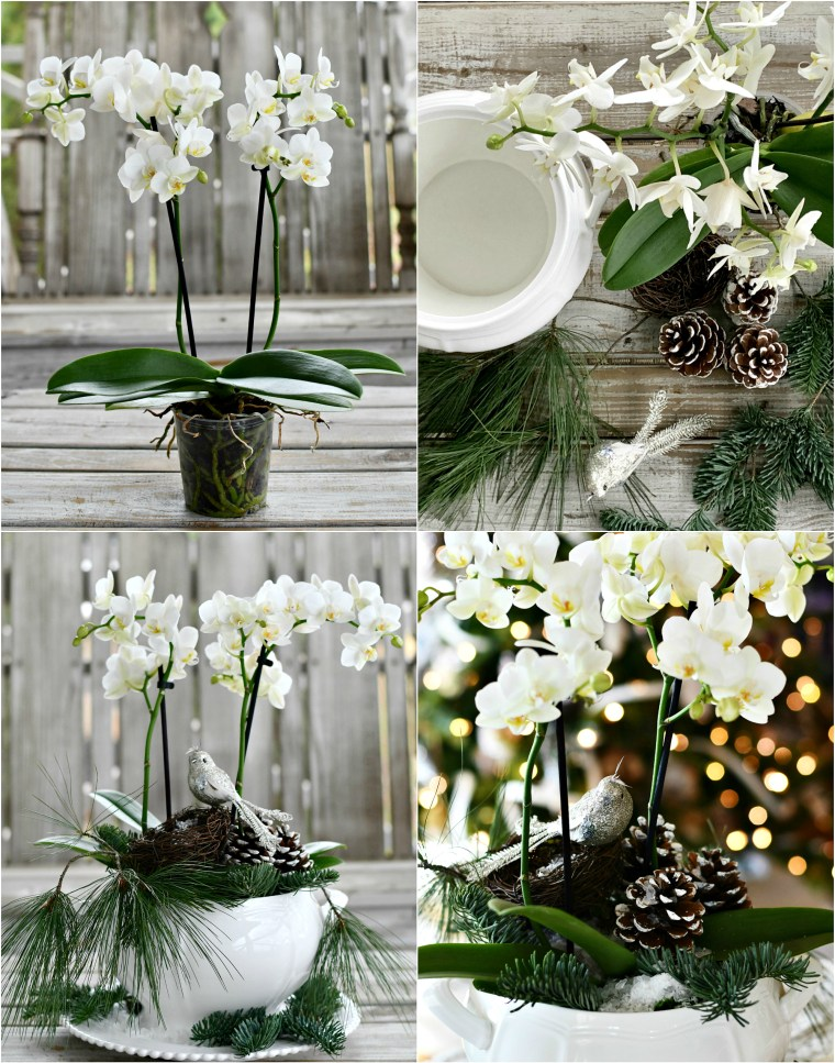 DIY orchid arrangement with bird and pine cones in tureen