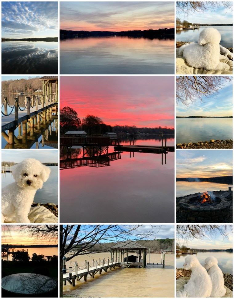 Weekend Waterview Lake Norman February | ©homeiswheretheboatis.net #LKN #lake #reflections #sunrise #sunset #dogs #bichonfrise