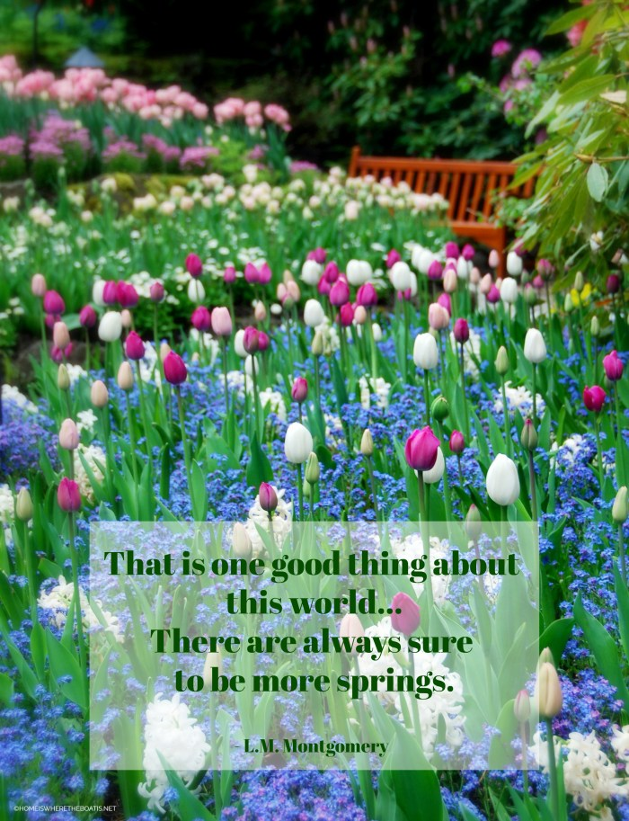 """That is one good thing about  this world... There are always sure to be more springs."" - L.M. Montgomery"