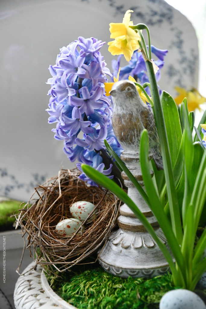 Birds and blooms | ©homeiswheretheboatis.net #spring #flowers