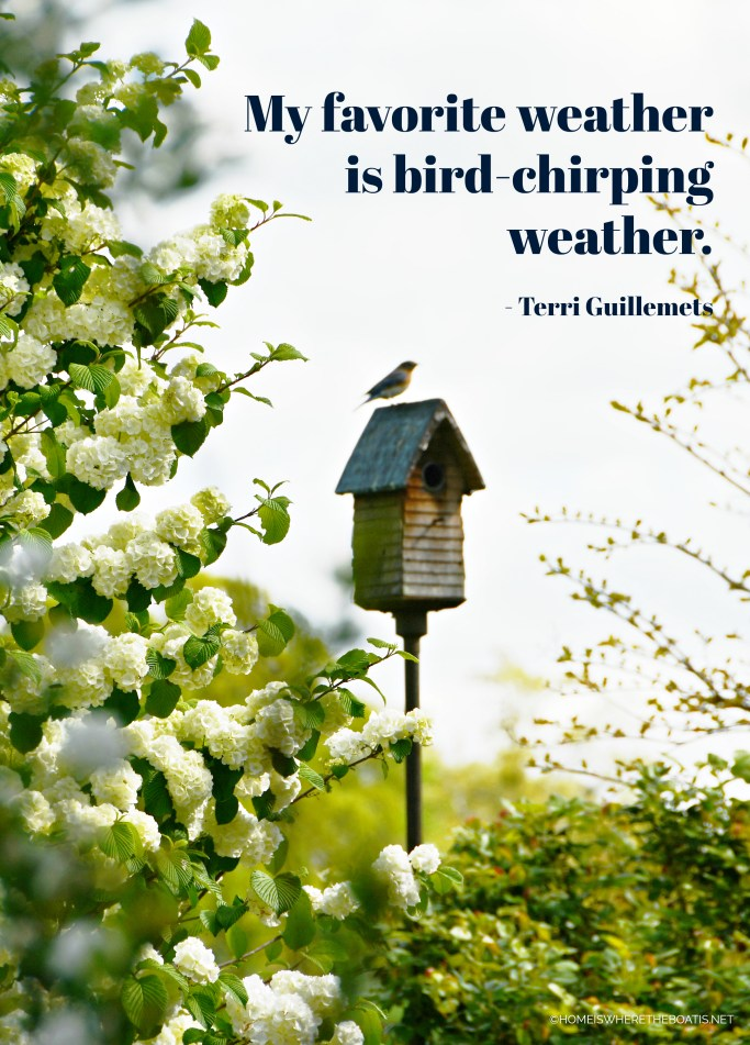 My favorite weather is bird-chirping weather. Terri Guillemets | ©homeiswheretheboatis.net