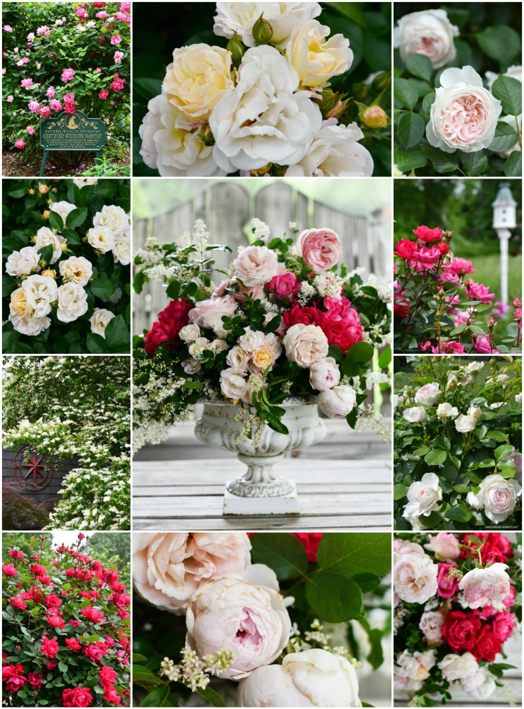 Garden Roses Mother S Day Flower Arrangement Home Is Where The Boat Is