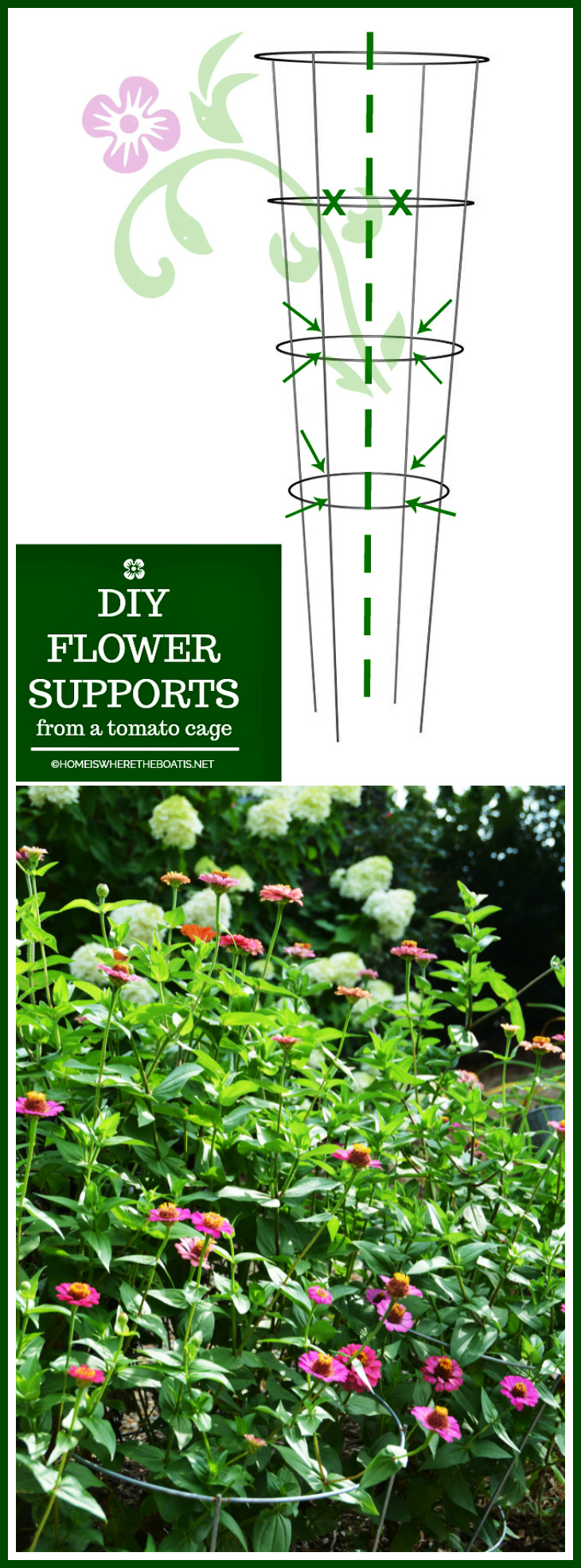 DIY Flower Supports from a Tomato Cage   ©homeiswheretheboatis.net #flowers #garden #DIY #tomatocage #hack