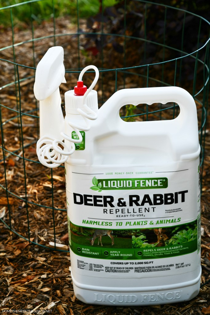 Liquid Fence Deer & Rabbit Repellent | ©homeiswheretheboatis.net #flowers #garden