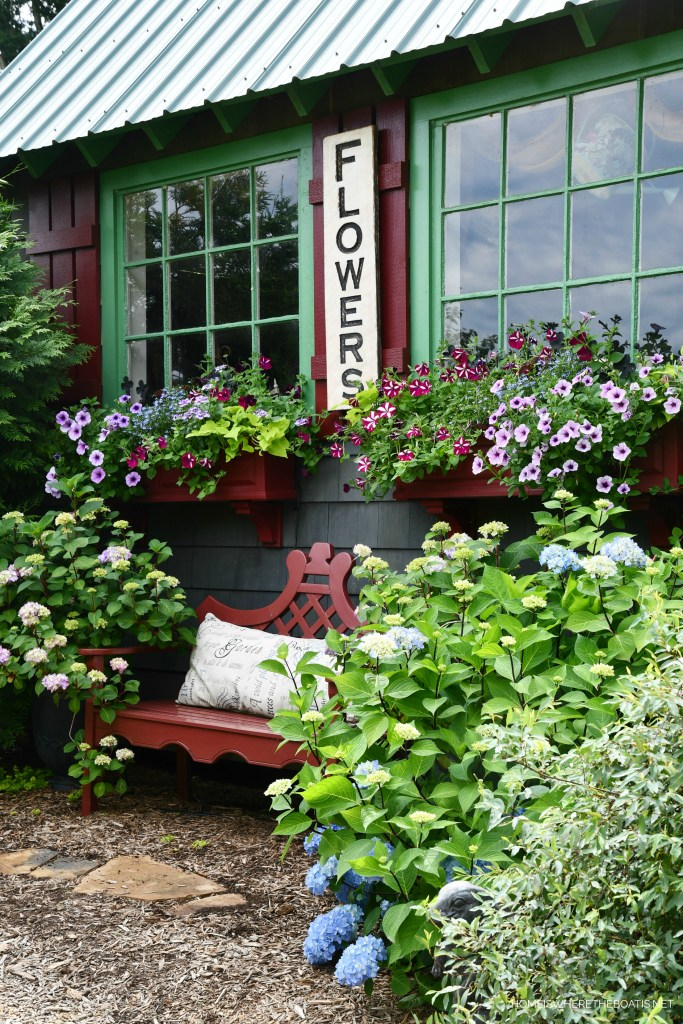 Window boxes Potting Shed | ©homeiswheretheboatis.net #flowers #garden