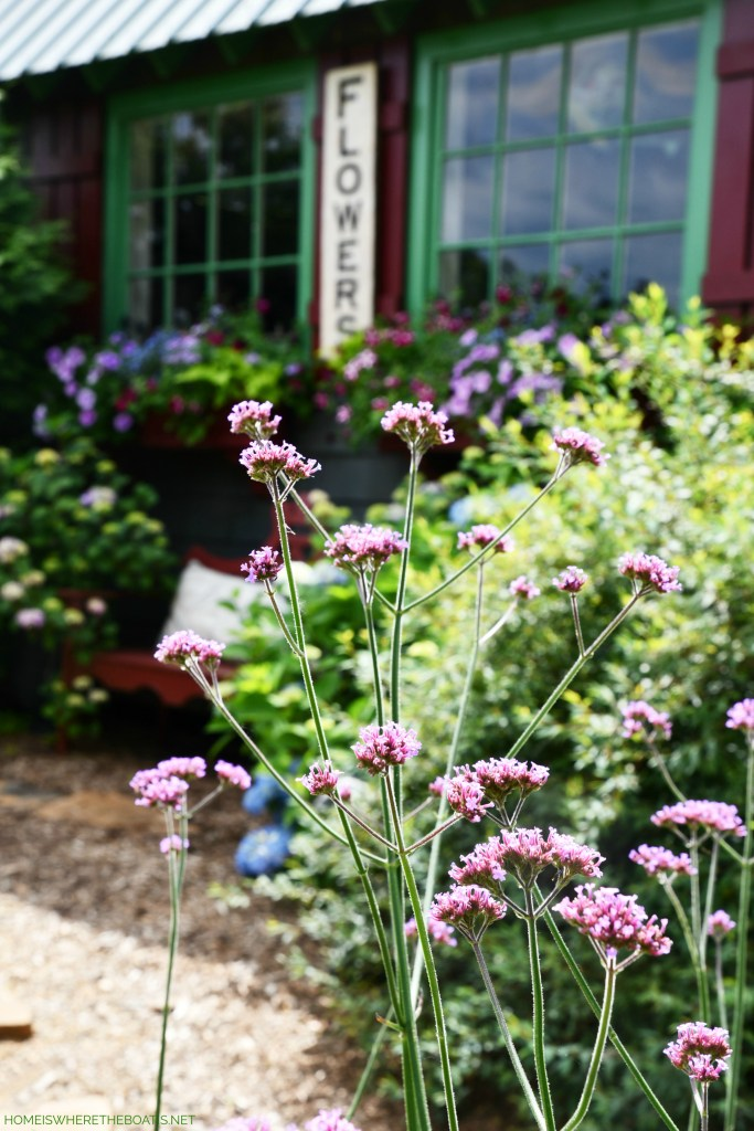 Flowers by the Potting Shed | ©homeiswheretheboatis.net #flowers #garden