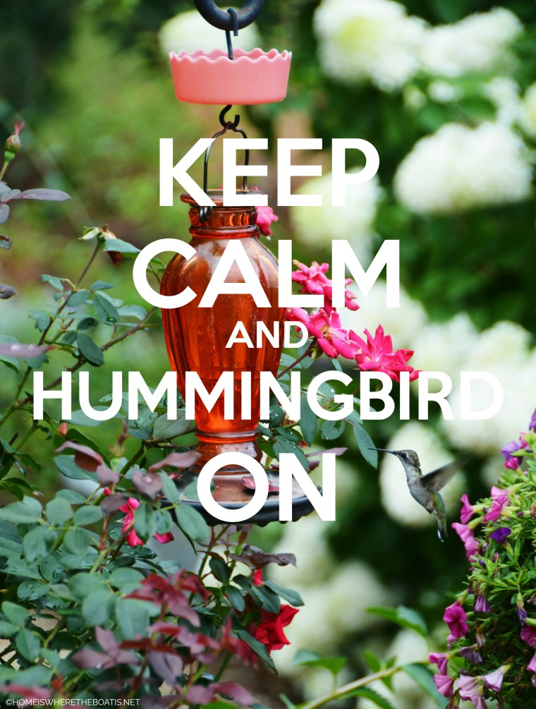 Keep Calm and Hummingbird On | ©homeiswheretheboatis.net #hummingbirds #tips #DIY