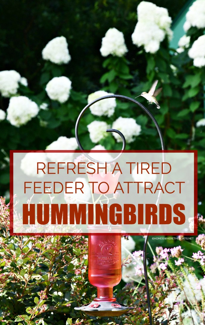 Attracting Hummingbirds and How to Revive a Tired Feeder | ©homeiswheretheboatis.net #flowers #garden #hummingbirds