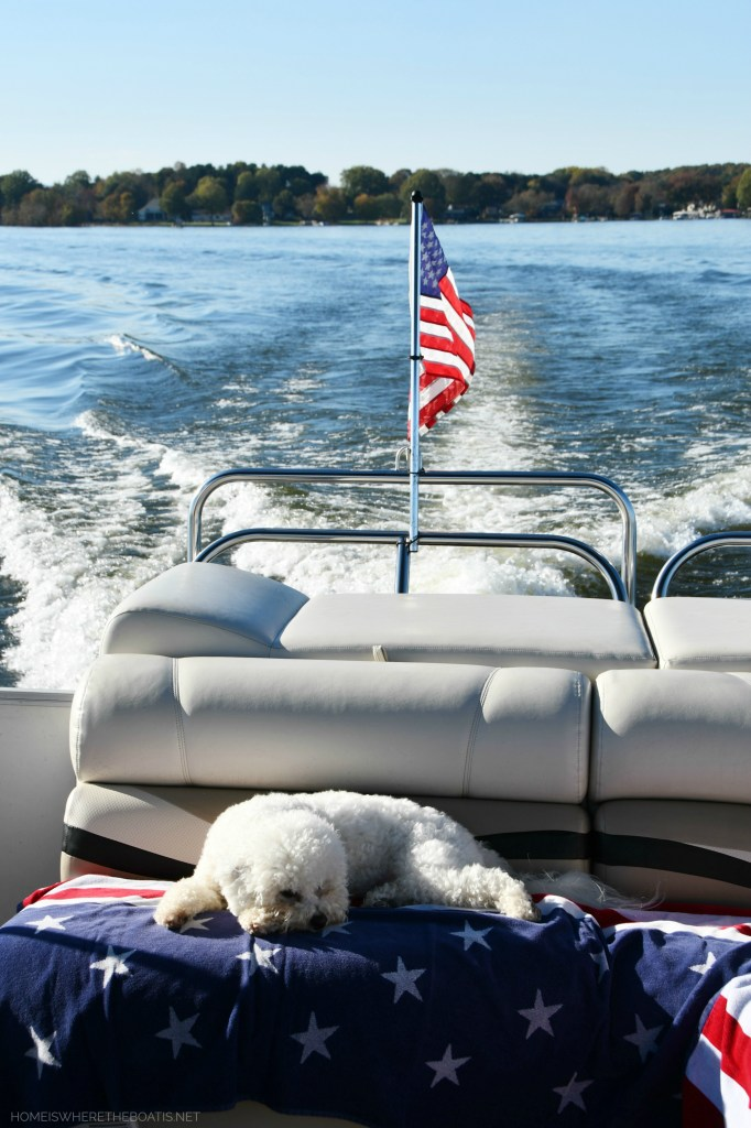 Sophie napping on pontoon | ©homeiswheretheboatis.net #boat #dog #bichonfrise #flag