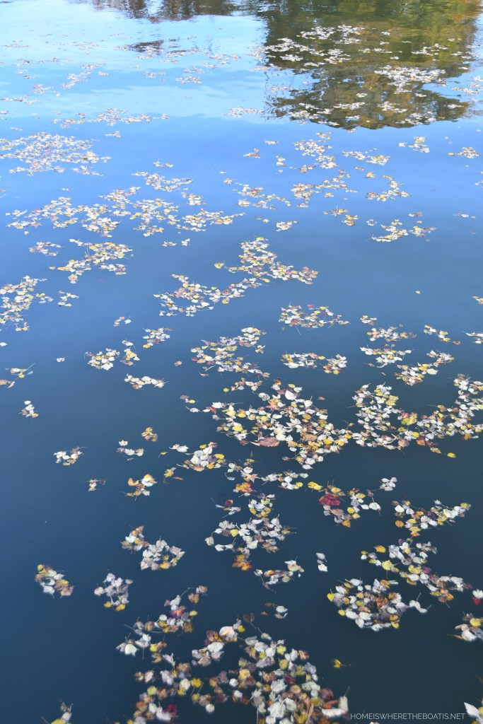 Weekend Waterview: Falling Leaves and Reflections | ©homeiswheretheboatis.net #fall #lake