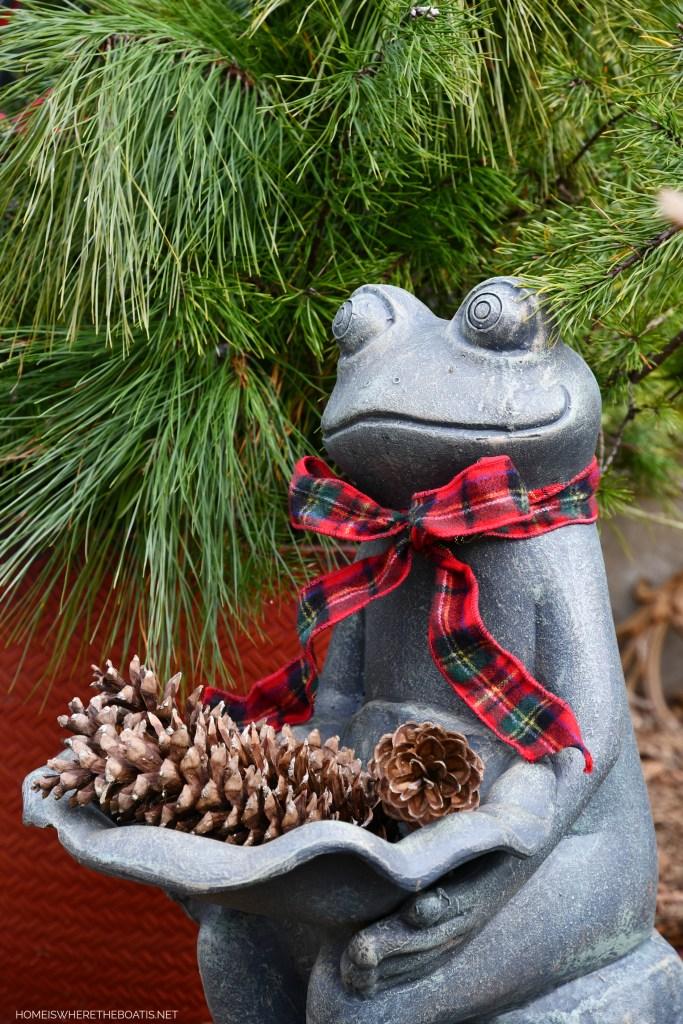 Smiling Frog birdbath with pine cones and tartan ribbon for Christmas | ©homeiswheretheboatis.net #pottingshed #christmas #greenery #garden