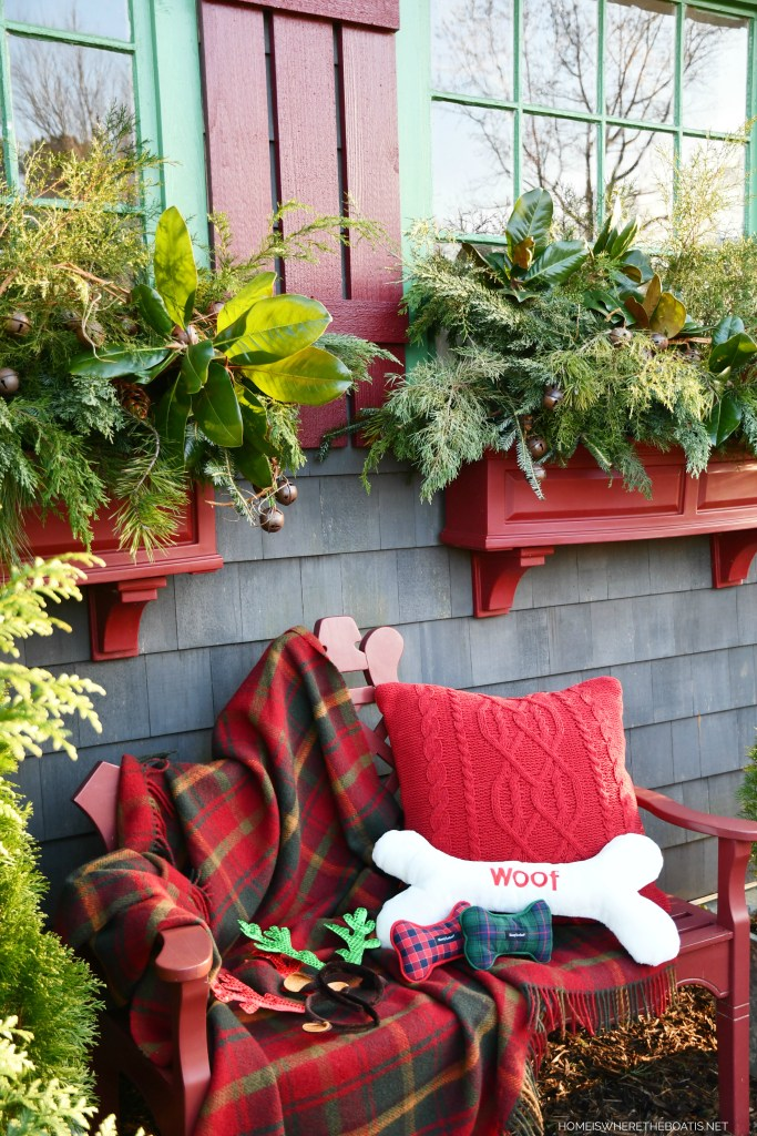 Window boxes and bench Potting Shed | ©homeiswheretheboatis.net #dogs #bichonfrise #christmas