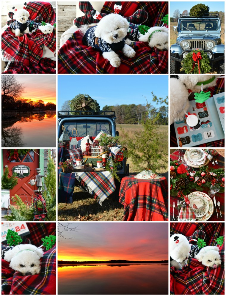 December tidbits | ©homeiswheretheboatis.net #christmas #plaid #tartan #dogs #bichonfrise #lake #sunrise #pottingshed #tailgate