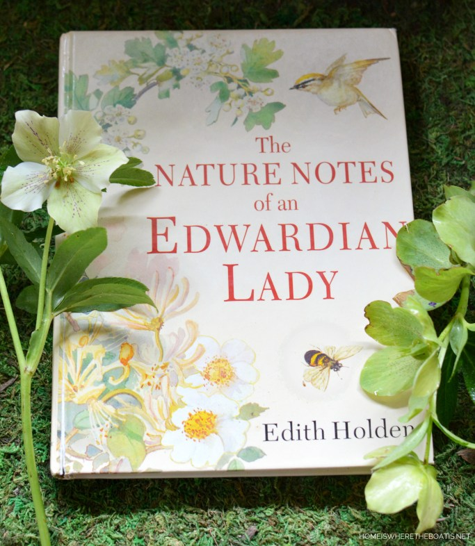 The Nature Notes of an Edwardian Lady by Edith Holden | ©homeiswheretheboatis.net #tablescapes #bunnies #shed #spring