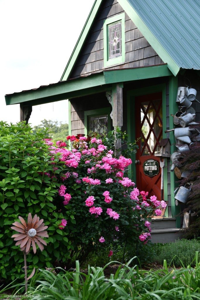 Petal'd Poetry and May Garden Blooms Around the Potting Shed | ©homeiswheretheboatis.net #pottingshed #garden #flowers