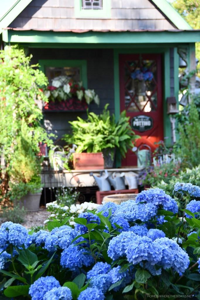 Endless Summer Hydrangeas and Bee door basket flower arrangement on Potting Shed door | ©homeiswheretheboatis.net #flowers #hydrangeas #DIY #garden #bees #nationalpollinatorweek