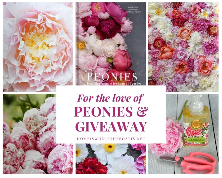 For the Love of Peonies and Giveaway   ©homeiswheretheboatis.net #peonies #flowers #giveaway