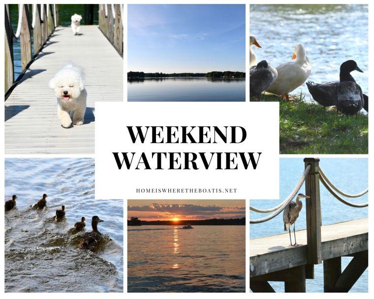 Weekend Waterview Lake Norman Ducks Great B;lue Heron Sunset Views | ©homeiswheretheboatis.net #lake #LKN #ducks #heron #sunset