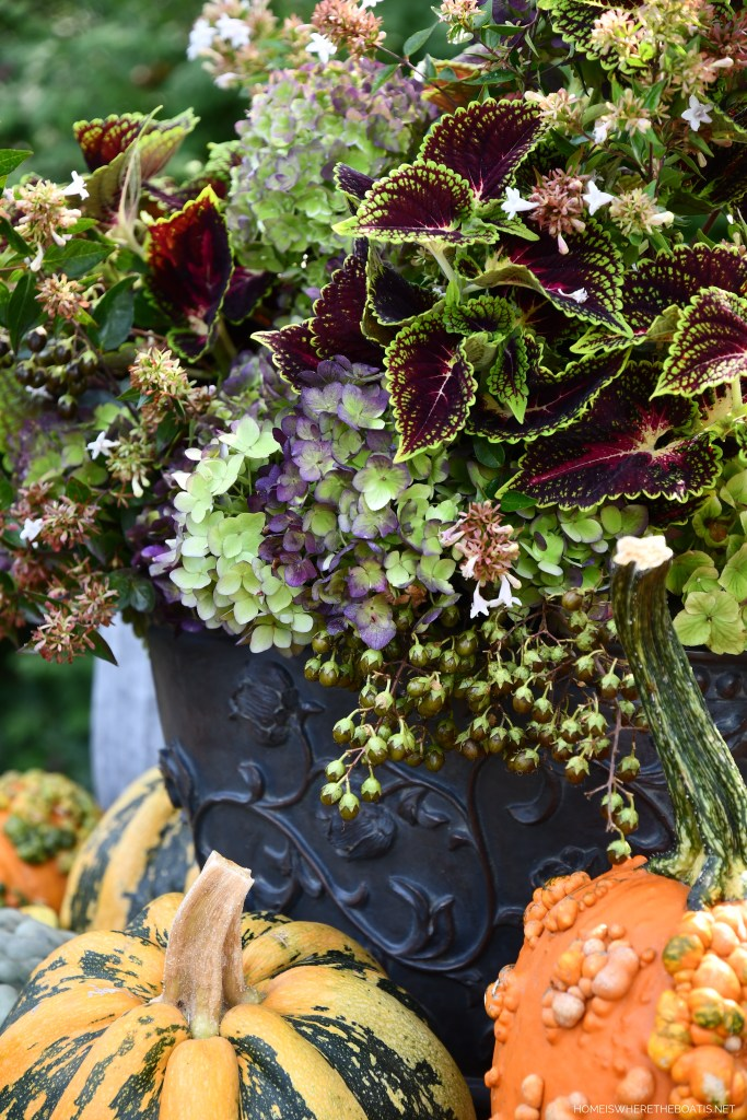 Welcoming Fall with a Colorful Harvest Arrangement of Hydrangeas, Pumpkins and Mums | ©homeiswheretheboatis.net #fall #arrangement #hydrangeas #pumpkins