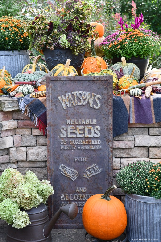 Welcoming Fall with a Colorful Harvest Arrangement of Hydrangeas, Pumpkins and Mums and vintage seeds sign | ©homeiswheretheboatis.net #fall #arrangement #hydrangeas #pumpkins #mums